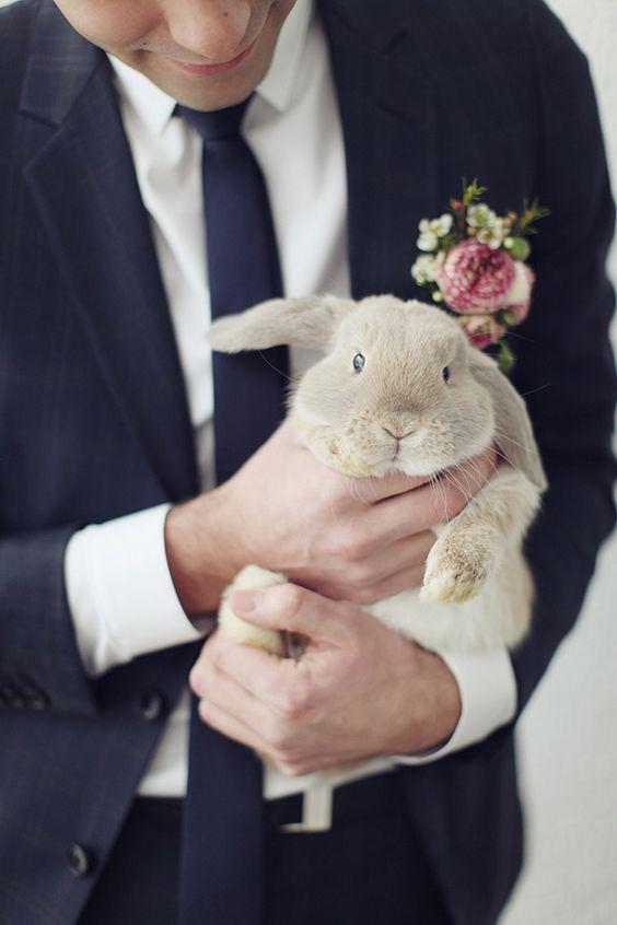 Conejo boda